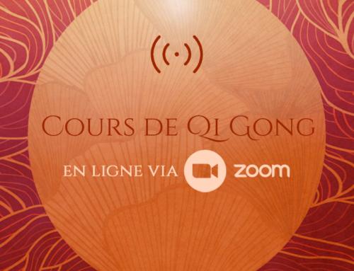 Cours en ligne via Zoom
